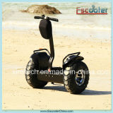 2 Wheel Chinese Street Electric Motorcycle