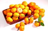 Export New Crop Good Quality China Mandarin Orange