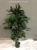 Artificial Plant Ficus Tree with Pot for Hotel Decoration (49861)
