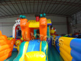Commercial Inflatable Castle Kids Inflatable Indoor Playground