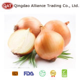 2017 New Crop Yellow Onion with Top Quality