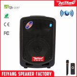 Feiyang Mini Rechargeable Bluetooth Cheap Speaker 6 Inch F6-10