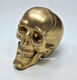 Halloween Decoration Plastic 4′′ Skull for Halloween Party Gold Skull Head