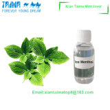 Natural Mint Flavor Food Flavors/Flavor Concentrate
