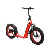 Kick E-Scooter with 20 Inch Tire Full Suspension Battery Removable Electric Scooter for Snow City Beach Rent Use