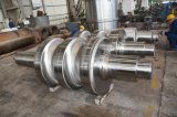 We Provide Roller for Rolling Mill
