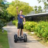 Ecorider Two Wheels Self Balancing Scooter Golf Trolley Golf Scooter