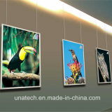 Wall Mounted Indoor Media Electric Lift Wholesale Fashion LED Super Thin LGP Light Box