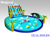 Inflatable Water Park with Swimming Pool (MIC-329)