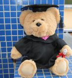 in Stock 207 Custom Graduation Teddy Bears