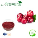 Health Food Cranberry Extract Proanthocyanidin 1% 25% 40% 50% 70% PAC, 1-100: 1 Plant Extract