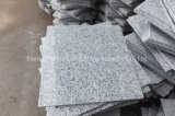 Cheap Grey Granite Tile for Flooring
