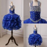 2018 Real Picture Royal Blue Ball Organza Flower Girl Dresses