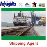 Freight Forwarder Air Shipping Agent to Spain Italy Belgium Denmark Logistics Door to Door Transport Services by Train Drop Sea Shipping