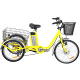 Manufacture/ Wholesale Three Wheel Cargo Shopping Tricycle Electric Bike