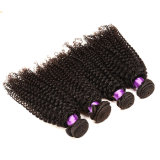 Grade 8A Malaysian Virgin Hair 3PCS Malaysian Kinky Curly Virgin Hair Bundles Unprocessed Malaysian Curly Hair Human Hair Weave