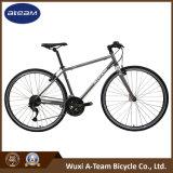 Good Price Mountain / Fitness Bike (FX6.3-6)