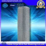 Hot-Dipped and Electric Galvanized Stainless Steel Welded Wire Mesh