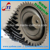CNC Machining Process Steel Spur Worm Gear