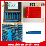 2017 Promoting DIN/ISO and ANSI Carbide Brazed Tools with SGS