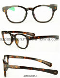 Fashion Famous Design Full Rim Tr90 Eyewear Optical Frame