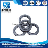 Spring Energized Seal PTFE Rotary Shaft Seals
