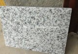 Polished G655 Grey Granite Slab for Wall/Floor