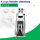 6 in 1 Multifunctional Fat Freezing Cryolipolysis Beauty Machine for Weight Loss