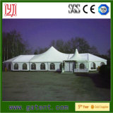 Big Commercial Concert Tents for Sale with Clear Span