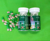 Green Plants to Burn Fat Advanced Natural Max Slimming Capsule