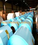 Embossed Polysurlyn Laminated Aluminum Sheet in Coil Roll with Competitive Price
