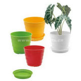 Colorful Plastic Flower Pot (KD549-KD553)