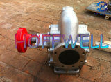 KCB Stainless Steel 316 Gear Pump
