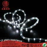 12V Cool White LED Rope Light for Outdoor Chrismtas Decoration