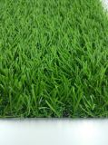 Synthetic Artificial Sports Grass Turf for Garden with Favorable Price