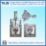 High Pressure Die Cast Die for Auto Parts/Die Casting Mould
