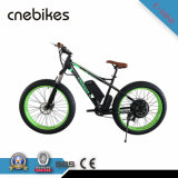 26inch 750W Brushless Motor Ebike Cruiser with CE Approved
