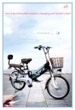 20 Inch Best Price Green City Pedal Assists Bicycle Electric Bike E Bicycle with Front and Rear Suspension