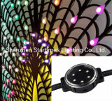 5 Years Warranty LED Pixel Module Christmas Decoration Wedding Decoration Christmas Light LED Lighting