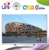 Wholesales High Quality Low Price LED TV