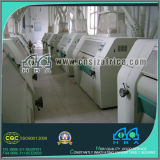 Turn-Key Project Wheat Flour Factory with Price 300tones