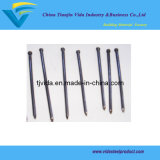"Excellent Quality of Headless Iron Nails (2"") From Manufacturer"