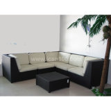 Leisure Furniture Aluminum Rattan Sofa (WS-06040)