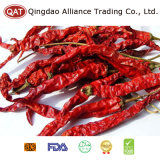 Export Standard New Crop Dehydrated Red Chili