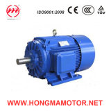 NEMA Series High Efficiency Three Phase Induction Motor