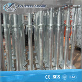 Adjustable Electro Galvanized Middled East or German Prop/ Scaffolding Jack Made in China