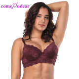 Own Factory New Arrival Women Sexy Wine Red Four Cups Lace Comfortable T-Shirt Bra