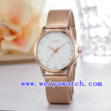 Watch Customize Stainless Steel Gift Watches (WY-027C)