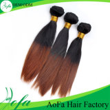 Factory Wholesale Hight Quality 7A Remy Omber Human Hair