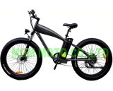 48V 500W Big Power Wde Tire Electric Bicycle